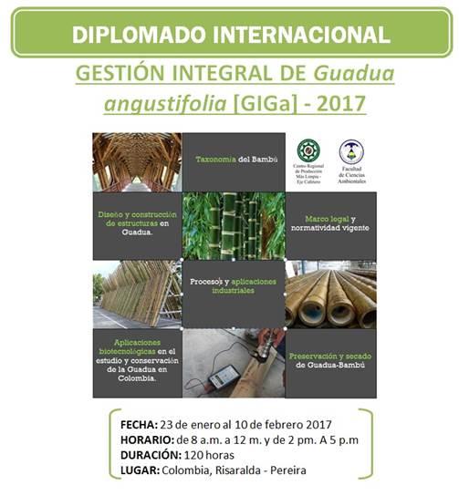 Diplomado Int